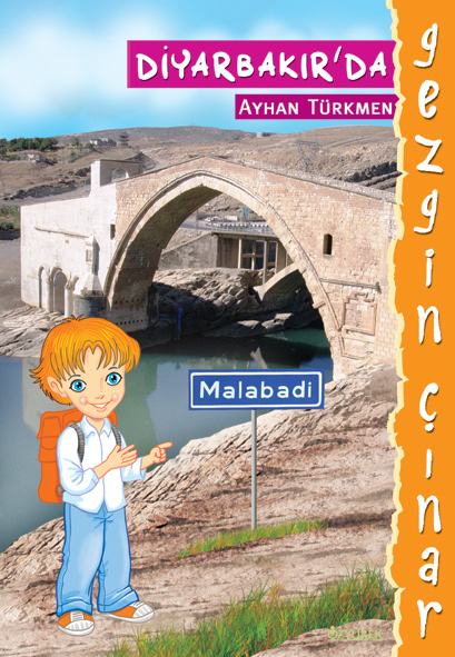 Gezgin Çınar Diyarbakır